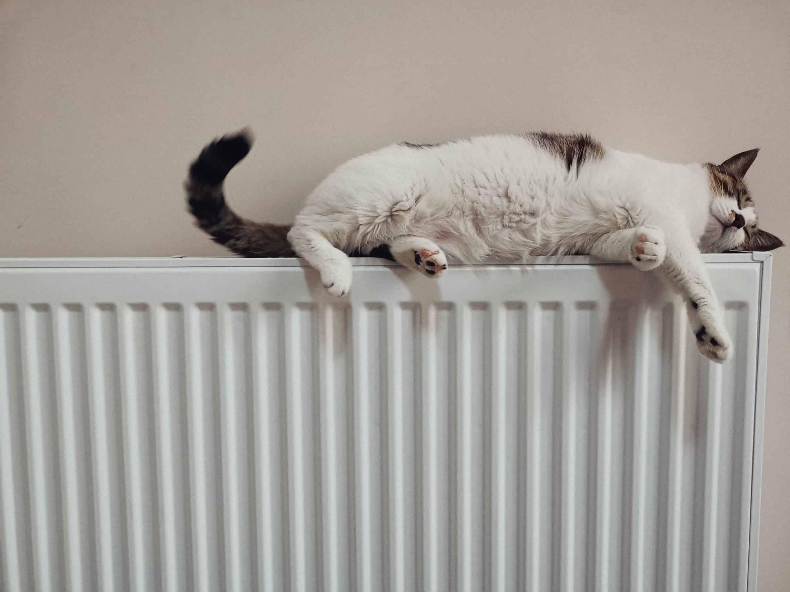 Définition d'un radiateur en décoration