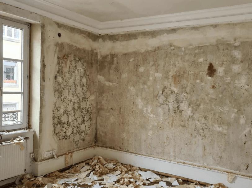 Rénovation d'appartement à Strasbourg et décoration